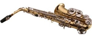 This is a great saxophone for the price!